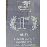 camping excellence flower bretagne
